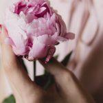 Karakteristik dari bunga Freesia
